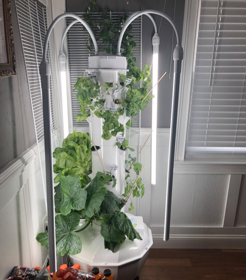 Tower Garden hydroponic system