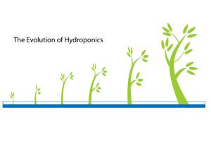 The Evolution of Hydroponics