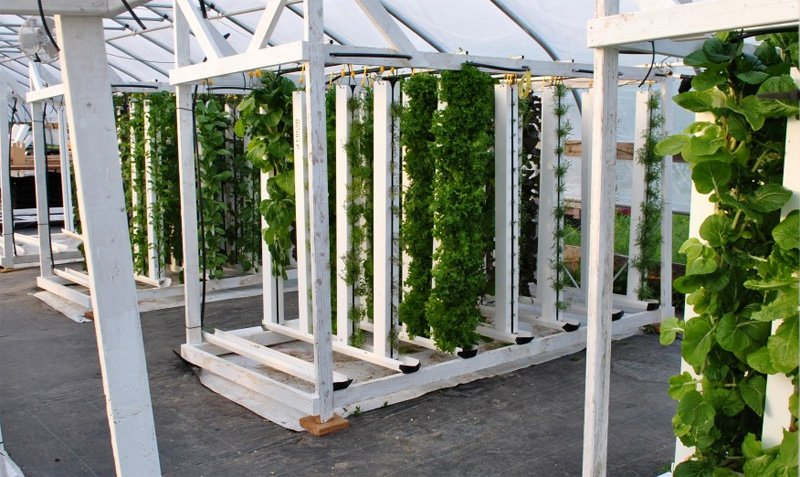 Vertical zip grow hydroponic system