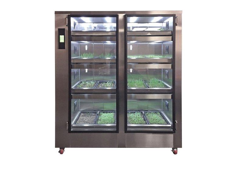 Microgreen cabinet