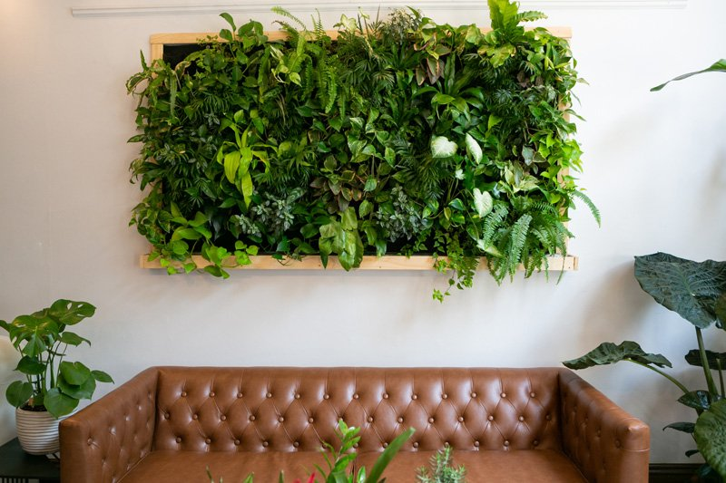 Wall mounted hydroponic system
