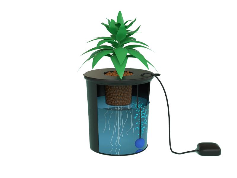 DWC Bucket Design