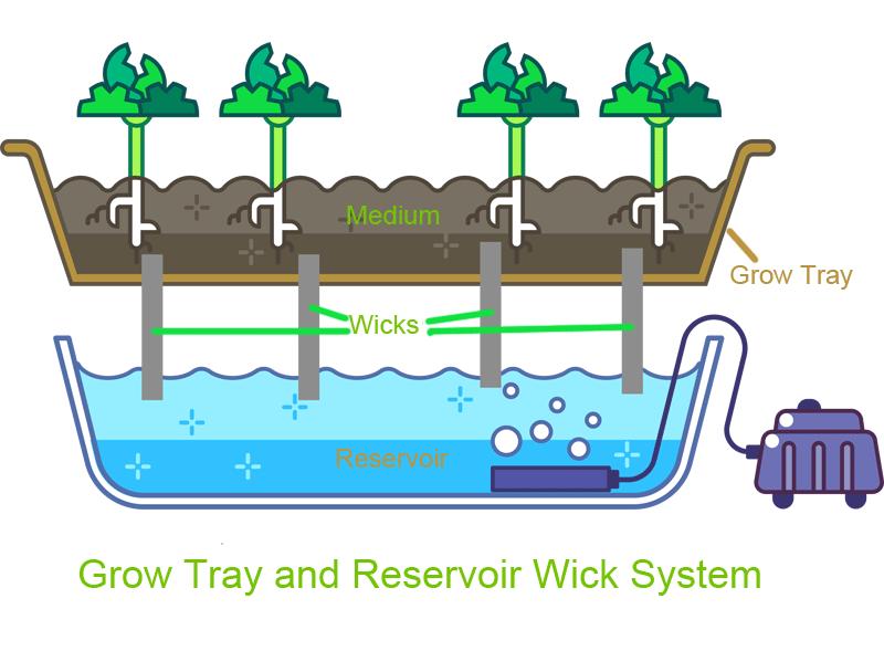 Grow tray wick system